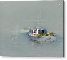 Trapped In The Fog Acrylic Print