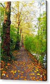 Traversee De L'automne Au Bord Du Canal De Seclin Acrylic Print