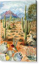 Treasures Of The Desert Acrylic Print by Marilyn Smith