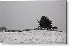 Tree And Fence In Snow Storm Acrylic Print