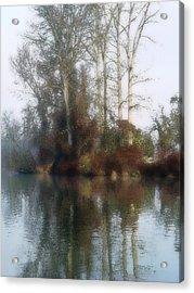 Tree And Reflection Acrylic Print