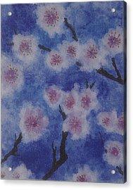 Tree Blossom Acrylic Print by Catherine Arcolio