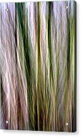 Tree Boughs Abstract II Acrylic Print by Natalie Kinnear
