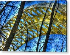 Tree Bridge Designs Acrylic Print by Mel Steinhauer