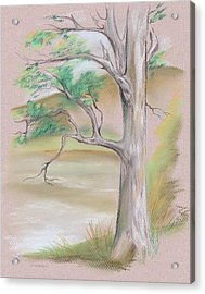 Acrylic Print featuring the pastel Tree By A Mountain Lake by MM Anderson
