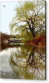 Tree By The River  Acrylic Print by Mark Ashkenazi