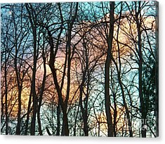 Tree Cloud Bouquets Acrylic Print by Judy Via-Wolff