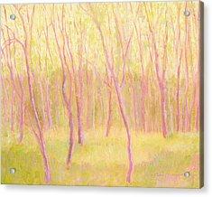 Tree Dance Acrylic Print by J Reifsnyder