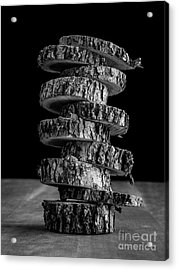 Tree Deconstructed Acrylic Print by Edward Fielding