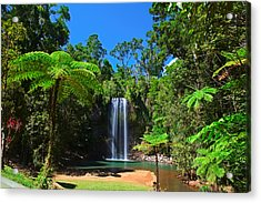 Tree Fern And Waterfall In Tropical Rain Forest Paradise Acrylic Print