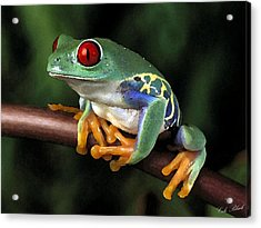 Tree Frog Acrylic Print by Cole Black