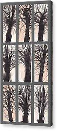 Tree Grid Acrylic Print by Sumiyo Toribe