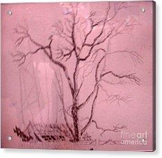 Tree Growing Out Of Barn Acrylic Print by Joseph Hawkins