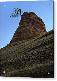 Tree Hoodoo Acrylic Print