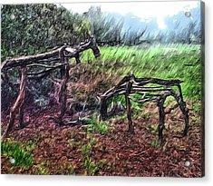 Tree Horse Acrylic Print