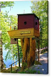 Tree House Boat Acrylic Print by Sherman Perry