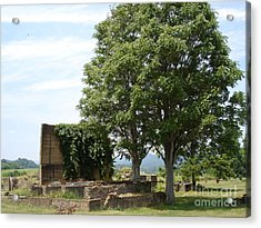 Acrylic Print featuring the photograph Tree House by Jane Ford