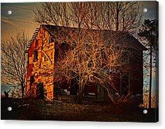 Tree House Acrylic Print