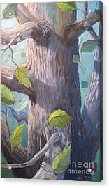 Tree Hugger Acrylic Print by Paula Marsh