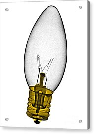 Tree Light Bulb X-ray Acrylic Print by Bert Myers