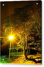Tree Lights Acrylic Print by Glenn Feron