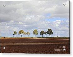 Tree Line France Acrylic Print