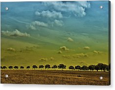 Acrylic Print featuring the photograph Tree Line by Susan D Moody