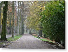 Acrylic Print featuring the photograph Tree Lined Path In Fall Season Bruges Belgium by Imran Ahmed