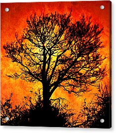 Acrylic Print featuring the digital art Tree Of Fire by Persephone Artworks