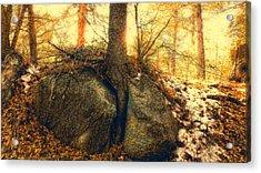 Tree Of Inspiration Acrylic Print