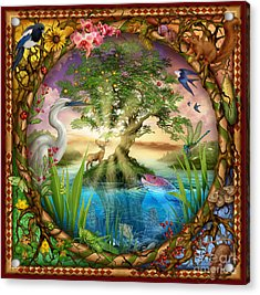 Tree Of Life Acrylic Print by Ciro Marchetti