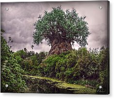 Tree Of Life Acrylic Print by Hanny Heim