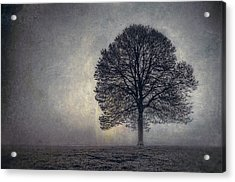 Tree Of Life Acrylic Print