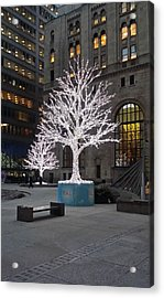 Tree Of Lights I Acrylic Print
