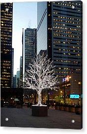 Tree Of Lights II Acrylic Print