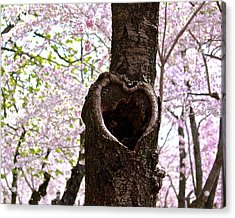 Tree Of Love Acrylic Print