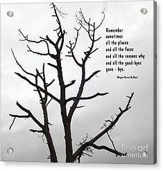 Tree Of Reverie Acrylic Print