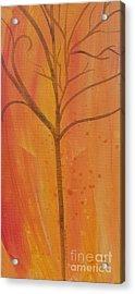 Tree Of Three Coral Acrylic Print by Robin Maria Pedrero