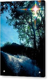 Tree Planted By Streams Of Water Acrylic Print