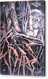 Tree Roots Acrylic Print by Janet Felts