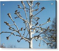 Tree Sculpture Acrylic Print by Paula Rountree Bischoff