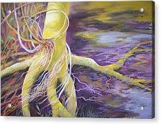 Tree Seeling Water Acrylic Print by Sheliah Halderman
