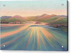 Tree Shadows Sunset Tasmania Acrylic Print
