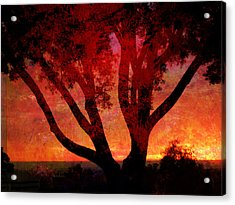 Tree Silhouette In Sunset Abstraction Acrylic Print