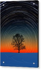 Acrylic Print featuring the photograph Tree Silhouette With Star Trails by Larry Landolfi