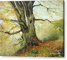 Tree Acrylic Print by Sorin Apostolescu