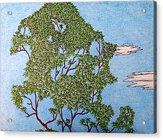 Tree Top 1 Of 3 Acrylic Print