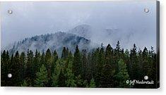 Tree Top Clouds Acrylic Print