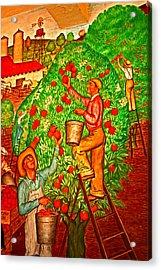 Tree Top Harvest Acrylic Print