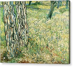 Tree Trunks In Grass Acrylic Print by Vincent van Gogh